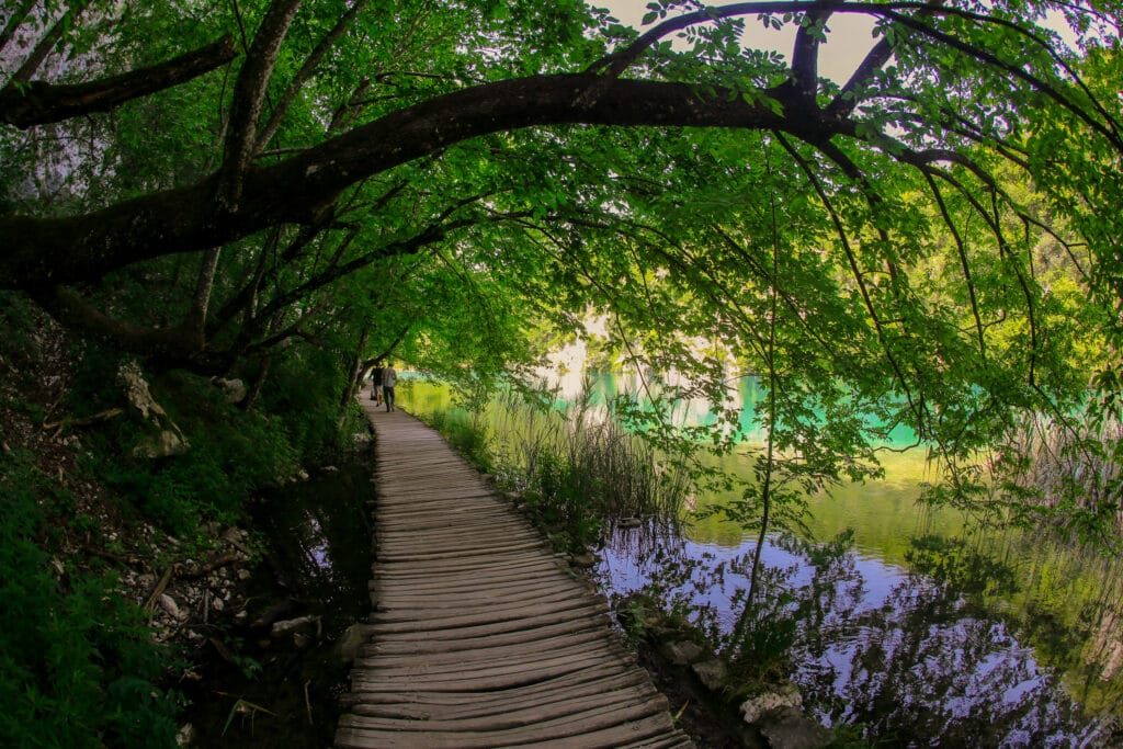 TOUR TO PLITVICE LAKES